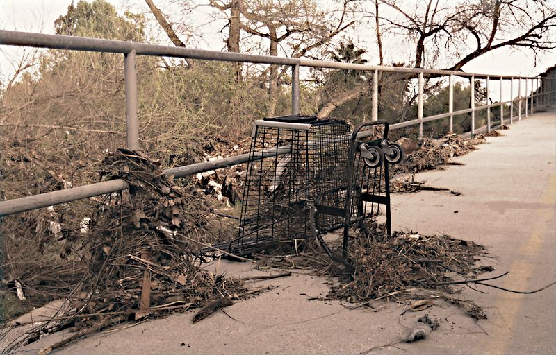 Fifteen feet above the creek bed, debris on the on the jogging path.