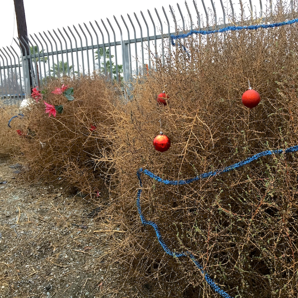 Tumbleweeds and decorations in the favela.