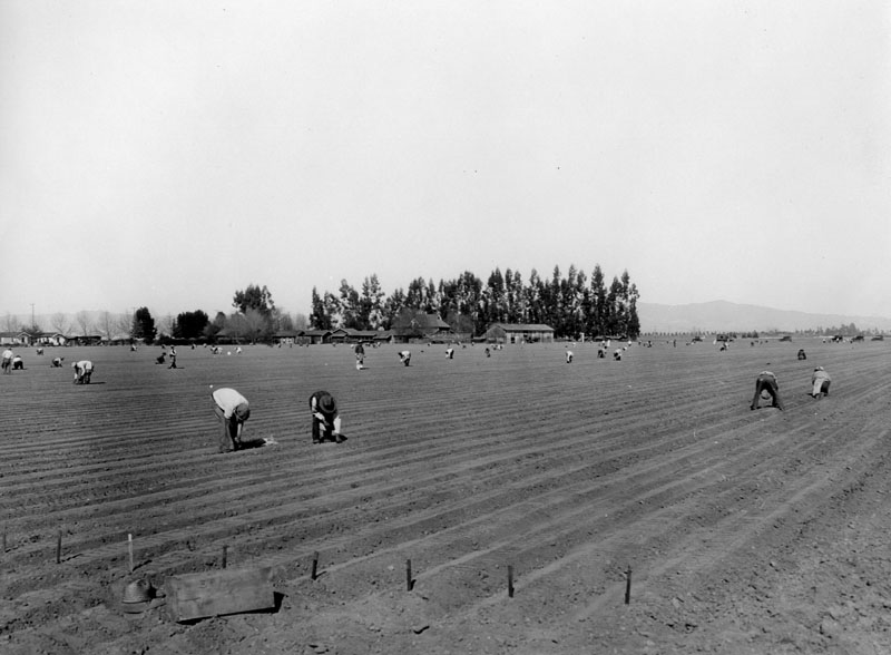 Petit Ranch, 1920